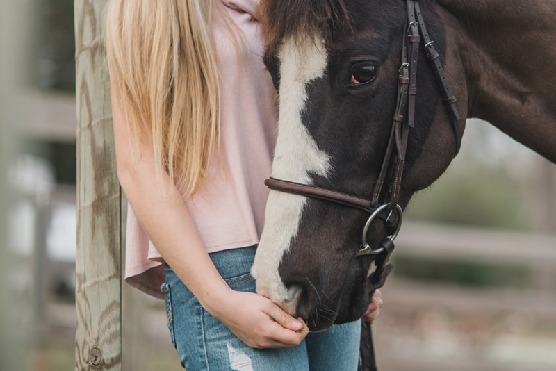 """""""Social isolation, changes in communication and restricted access to horses caused social, professional and psychological stress in the group of interviewed individuals,"""" the researchers said."""