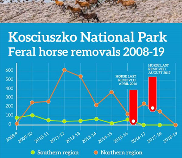 In 2012, about 616 horses were removed, while in 2016, about 210 horses were removed, and, again, in 2017 about 150 were removed.