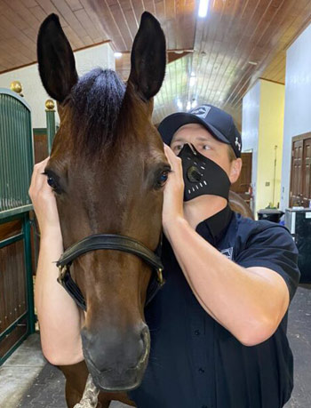 The Temporomandibular joint (TMJ) is one of the major adjustment points oin the horse, says Dr Ryan Lukens.