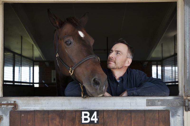 Associate Professor Denis Verwilghen with a horse at the Camden Equine Centre.