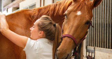 The study team, writing in the journal Environmental Research and Public Health, found that the equine students had fewer emotional and behavioral problems, and their prosocial behavior was about four times better than that of the control group.