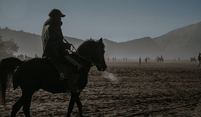 With a detailed knowledge of their animals, horse owners and riders are ideally placed to contribute to research, but are sometimes reluctant to engage with and devote time to surveys.