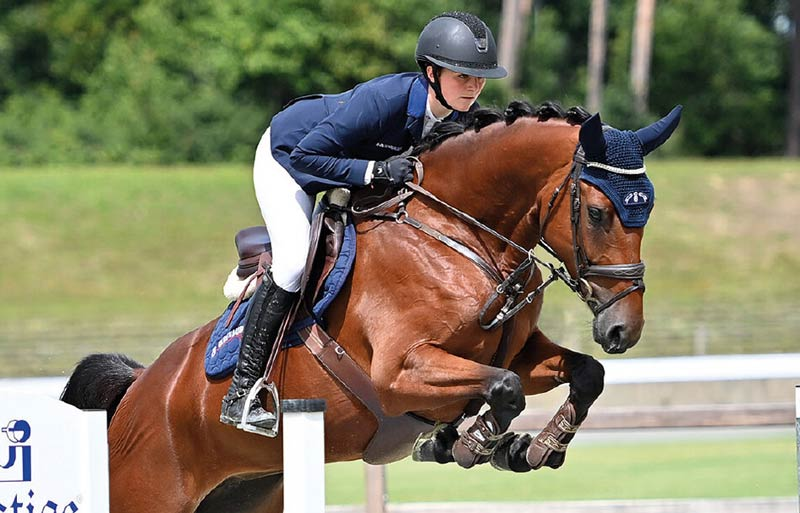 Con Sugar was the highest priced showjumper at the 93rd Fall Elite Auction at the Oldenburg Horse Center in Vechta last week, selling for €86,500.