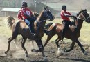 """South Africa welcomes new """"traditional"""" equestrian discipline"""