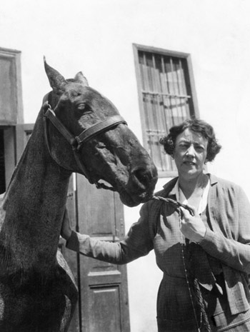 Dorothy Brooke with an old war horse in Cairo.