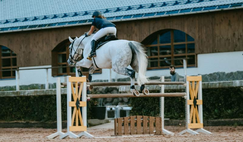 """Across both disciplines, riders included technical skills in their warm-up such as lateral work, transitions and jumping."""