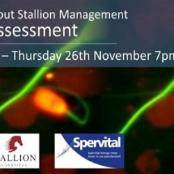 Tullis talks semen assessment in latest stallion webinar