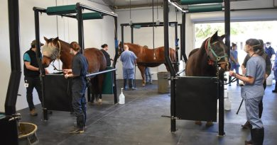Vet school unveils updated horse breeding facilities