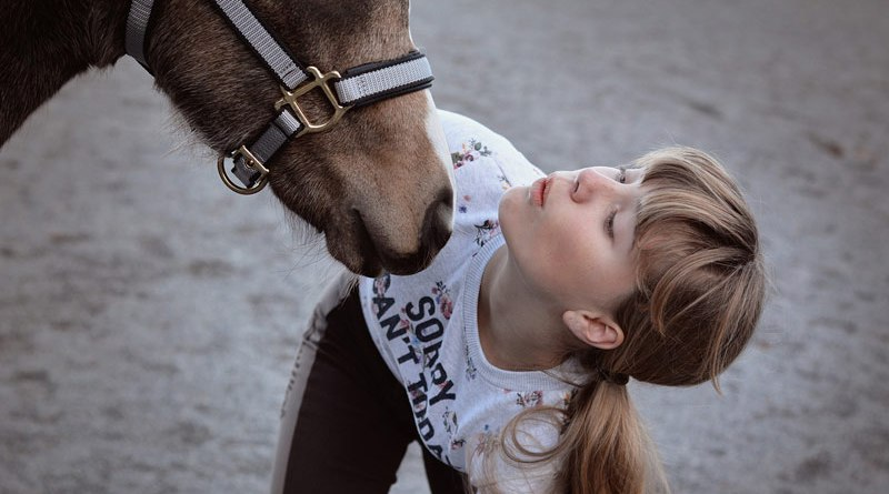 A free course on safety with horses for youngsters aged 13 to 17 is on offer from Equine Guelph, the horse centre at the University of Guelph in Canada.