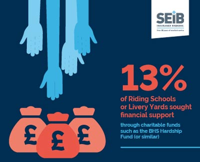 13% of livery yards and riding schools sought financial support.
