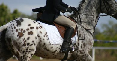Are you brave in the saddle? If not, you risk being belittled and excluded, study finds