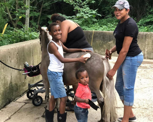 Youngsters help groom a pony at the Philadelphia Urban Riding Academy.