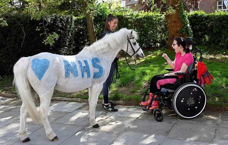 Park Lane Stables brought one of their ponies, Annie's Whizz, to visit Londoners who were self-isolating during a Covid-19 lockdown last year.