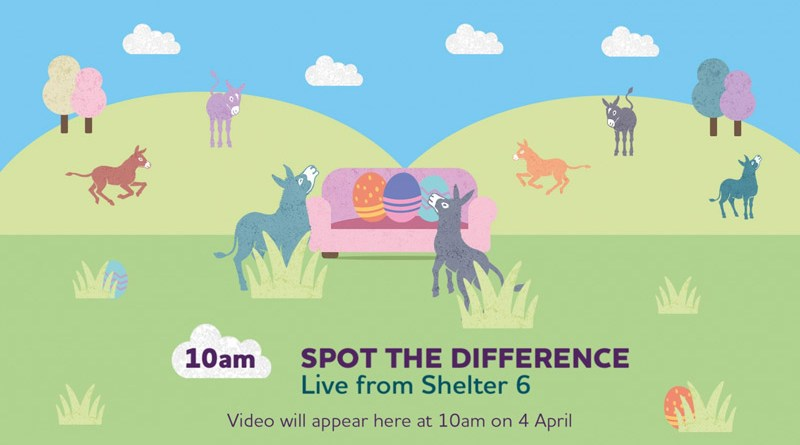 """""""Sanctuary From Your Sofa"""" with The Donkey Sanctuary returns this Easter Sunday, on April 4."""