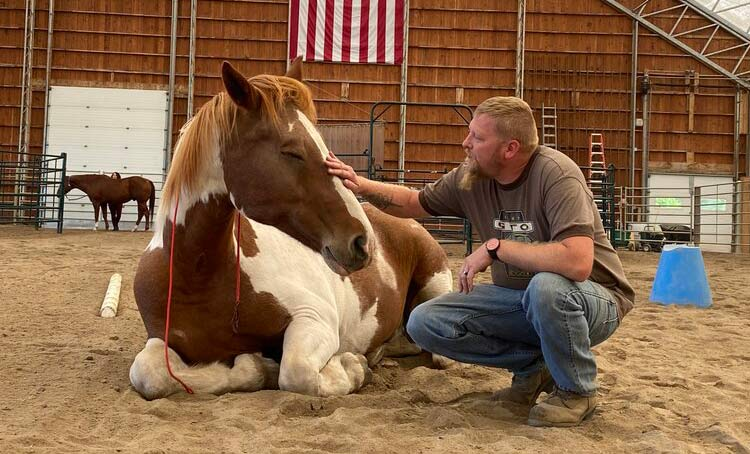 Therapy horse Buddy with a war veteran.