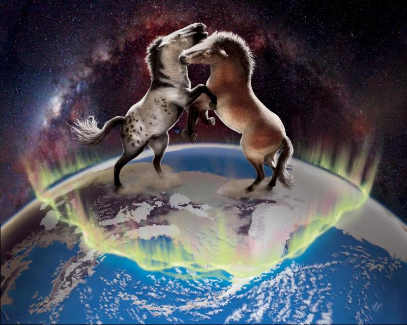 Ancient horses crossed over the Bering Land Bridge in both directions between North America and Asia multiple times during the Pleistocene. Image: Julius Csotonyi