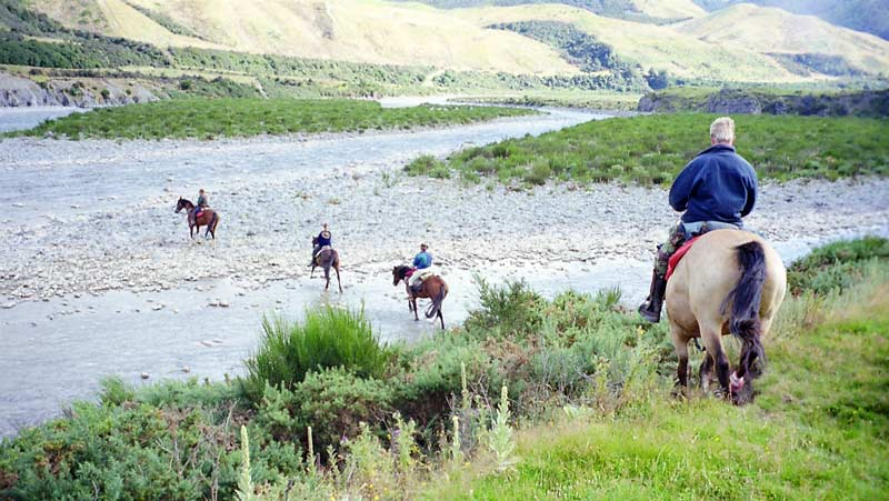 Respect other users of the countryside. Consider yourself an ambassador for horse riders. Leave your dog at home.
