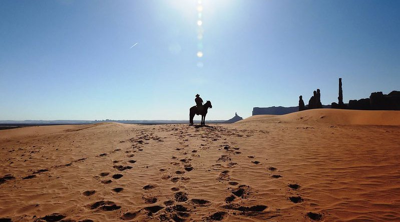 The footprints left in the sand by 15 horses of various breeds with various gaits were videotaped, photographed, described, and measured in order to determine characteristics useful in distinguishing gaits.