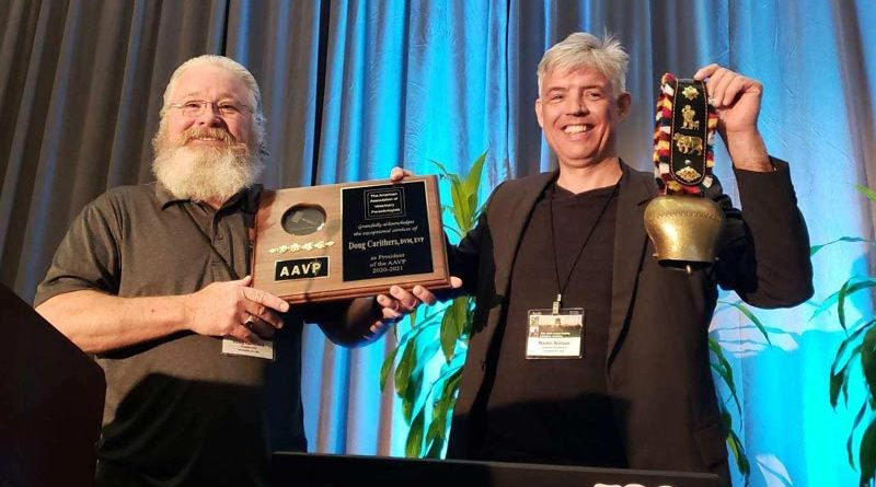 Martin Nielsen accepts the handoff of the AAVP presidency cowbell from predecessor Doug Carithers, DVM, director of applied research and publications at Boehringer Ingelheim.