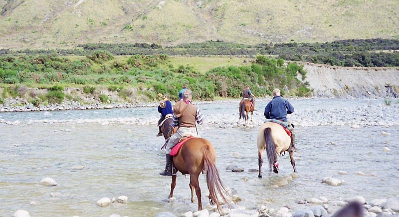 Horses will tend to move downstream as they cross, so it may be wise to start upstream from your intended exit point.