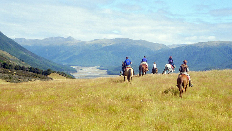 Beginners should find a route that avoids major river crossings, steep hillsides, sharp rock, and root-bound country.
