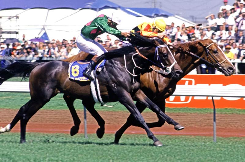 Empire Rose (inside) narrowly defeats Natski in the 1988 Melbourne Cup for trainer Laurie Laxon.
