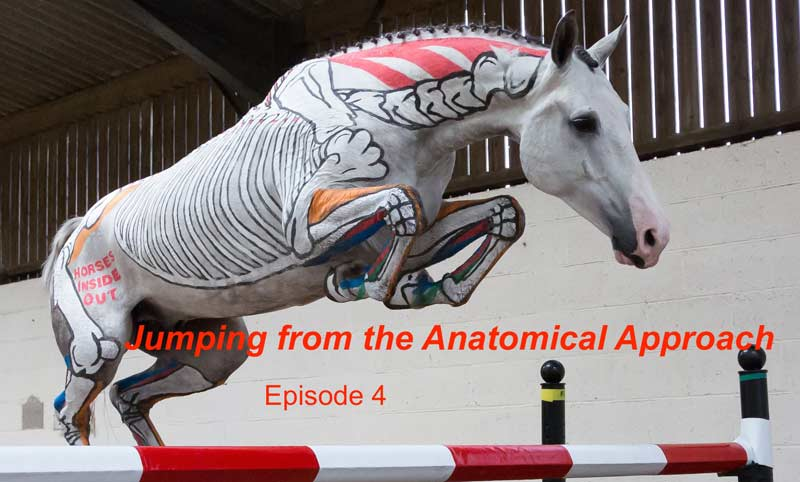 Episode 4: Jumping from the anatomical approach