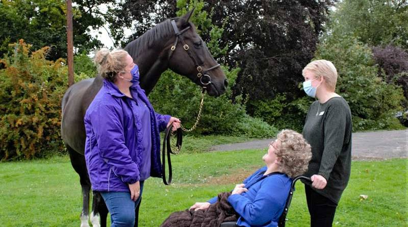 Ouzbeck, pictured at the OSJCT Coombe End Court, is part of a pilot programme to bring retired thoroughbreds into care homes.