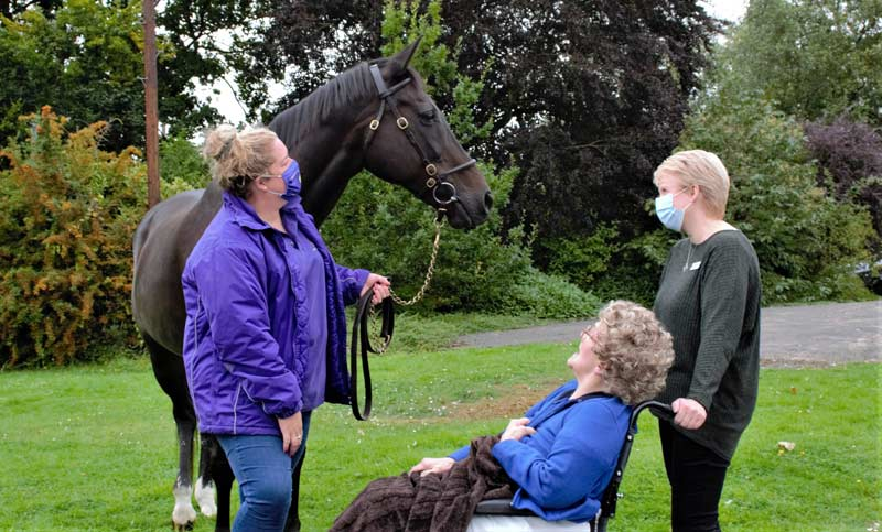 Ouzbeck, pictured at the OSJCT Coombe End Court care home in Marlborough, is part of a pilot programme to bring retired thoroughbreds into care homes.