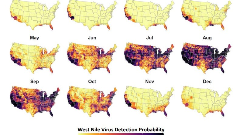 West Nile Virus detection probability in the contiguous US.