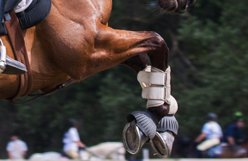 Training-related activities were classified automatically using just two leg-mounted sensors in a Belgian study.