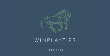 WinPlayTips – Review