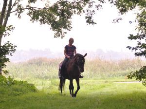 Stef en eigen paard Femke