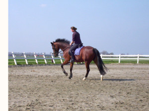 training met Femke bij Albert