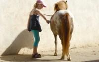 ponymeisje poetst een pony