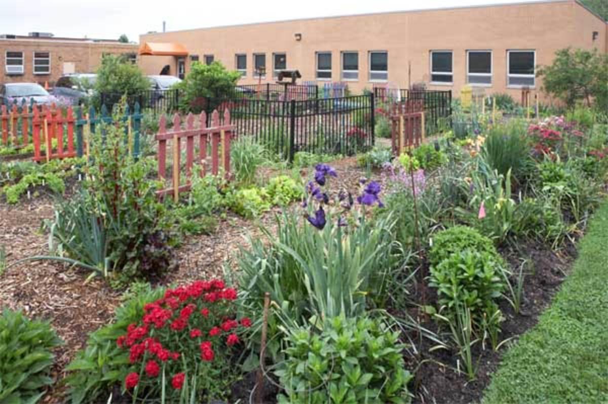 Granny S Garden School