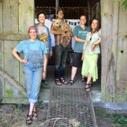 AP Barn Crew