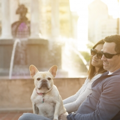 Dog Friendly at Horton Plaza Park