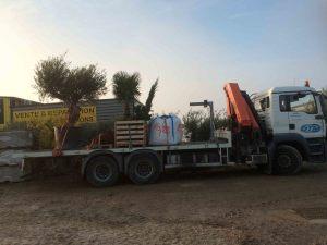 livraison-camion grue