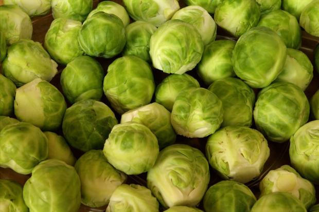 high-value vegetables-brussels-sprouts
