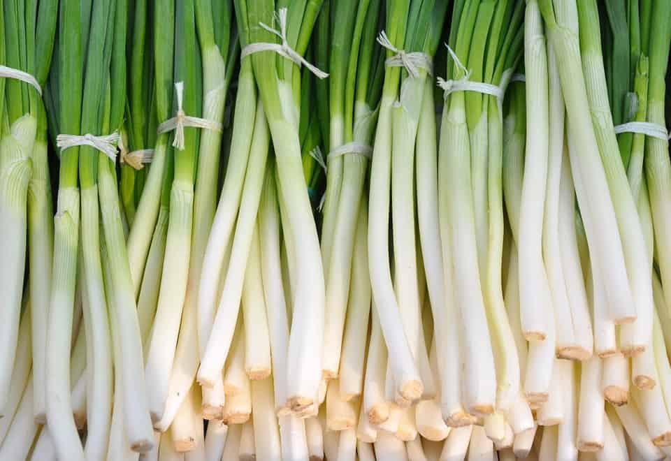 high-value vegetables-onions