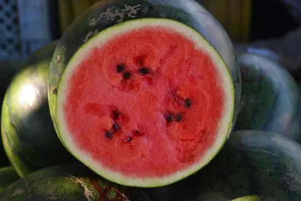 high-value vegetables-watermelon