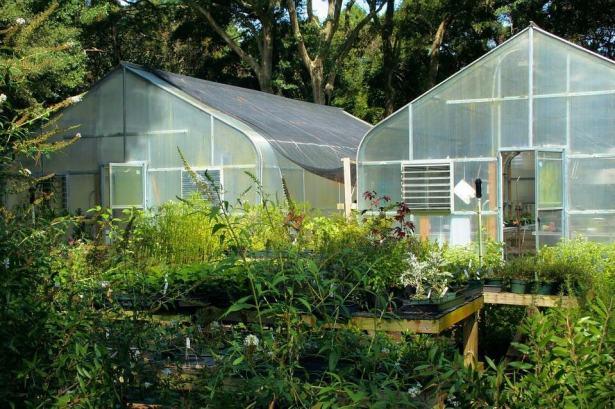 Greenhouse farming - glasshouses
