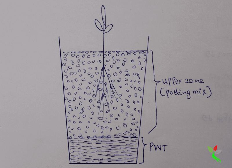 improve the drainage