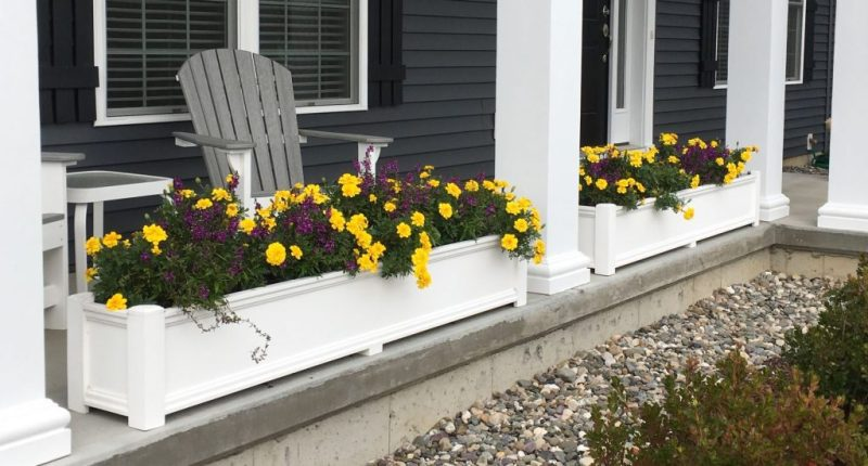 Boost the Curb Appeal of Your Property