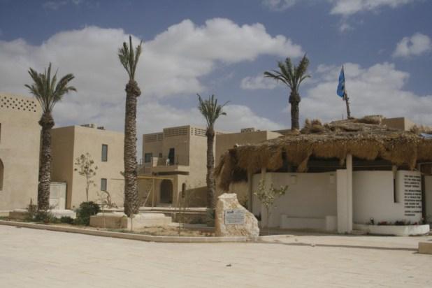 אשלים (כפר עדיאל) - פתחת ניצנה