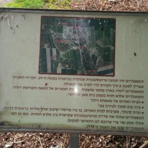 התישבות טמפלרית בעמק בית שאן