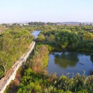 Ein Afek Crusader's dam and ponds Photo: MathKnight