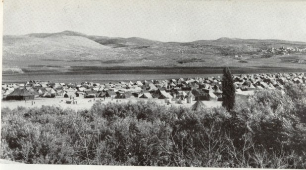 Balata refugee Camp. Circa 1950. Picture caption: Arabiskt flytinglager nara Sikem