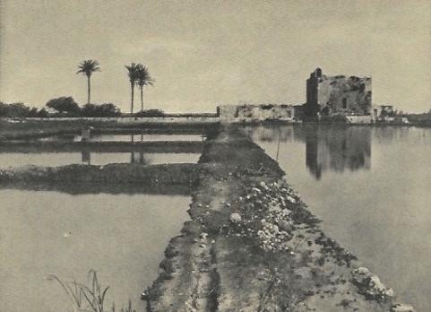 Fish-Breeding Kurdany מראה המקום לפני 1948